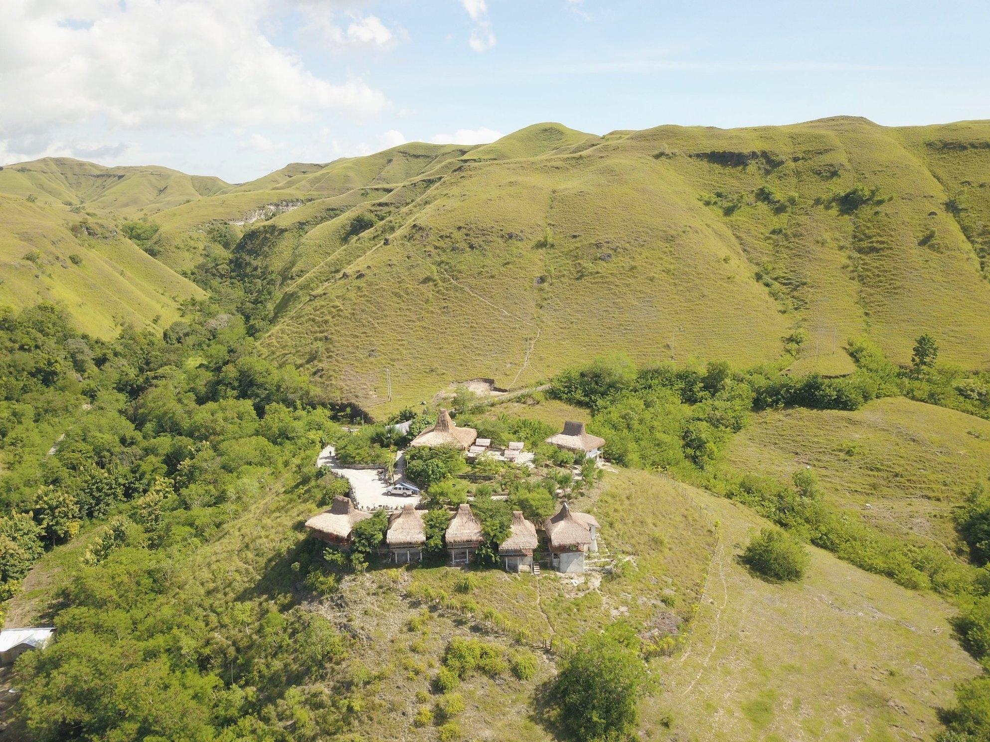Morinda villa