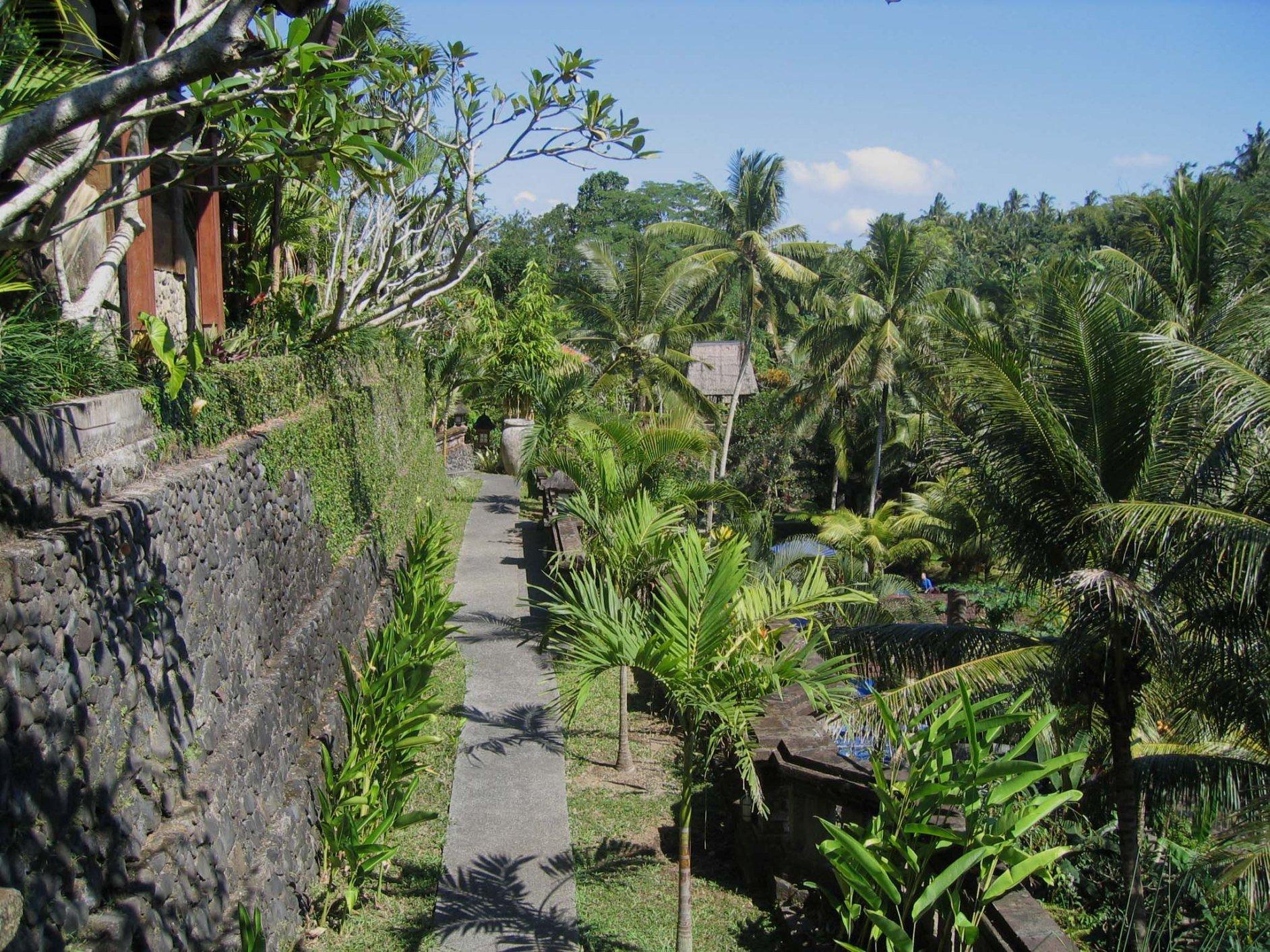 Bali Spirit