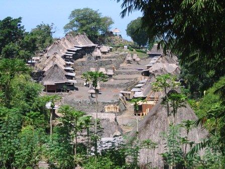 Traditioneel dorpje Ngada bij Bajawa, Flores