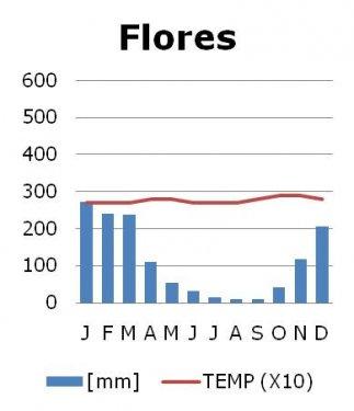 Klimaat Flores