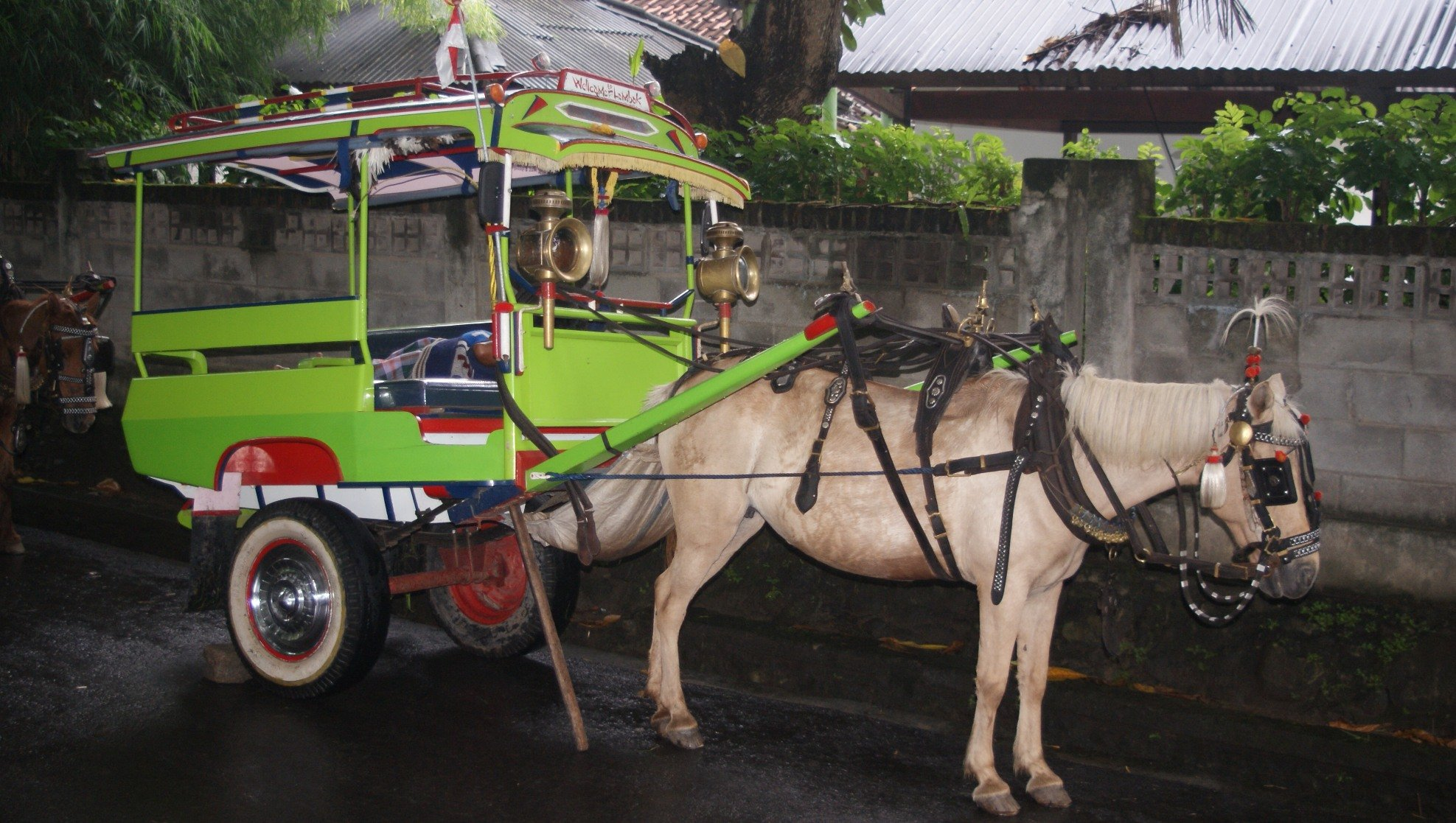 Cidomo Lombok
