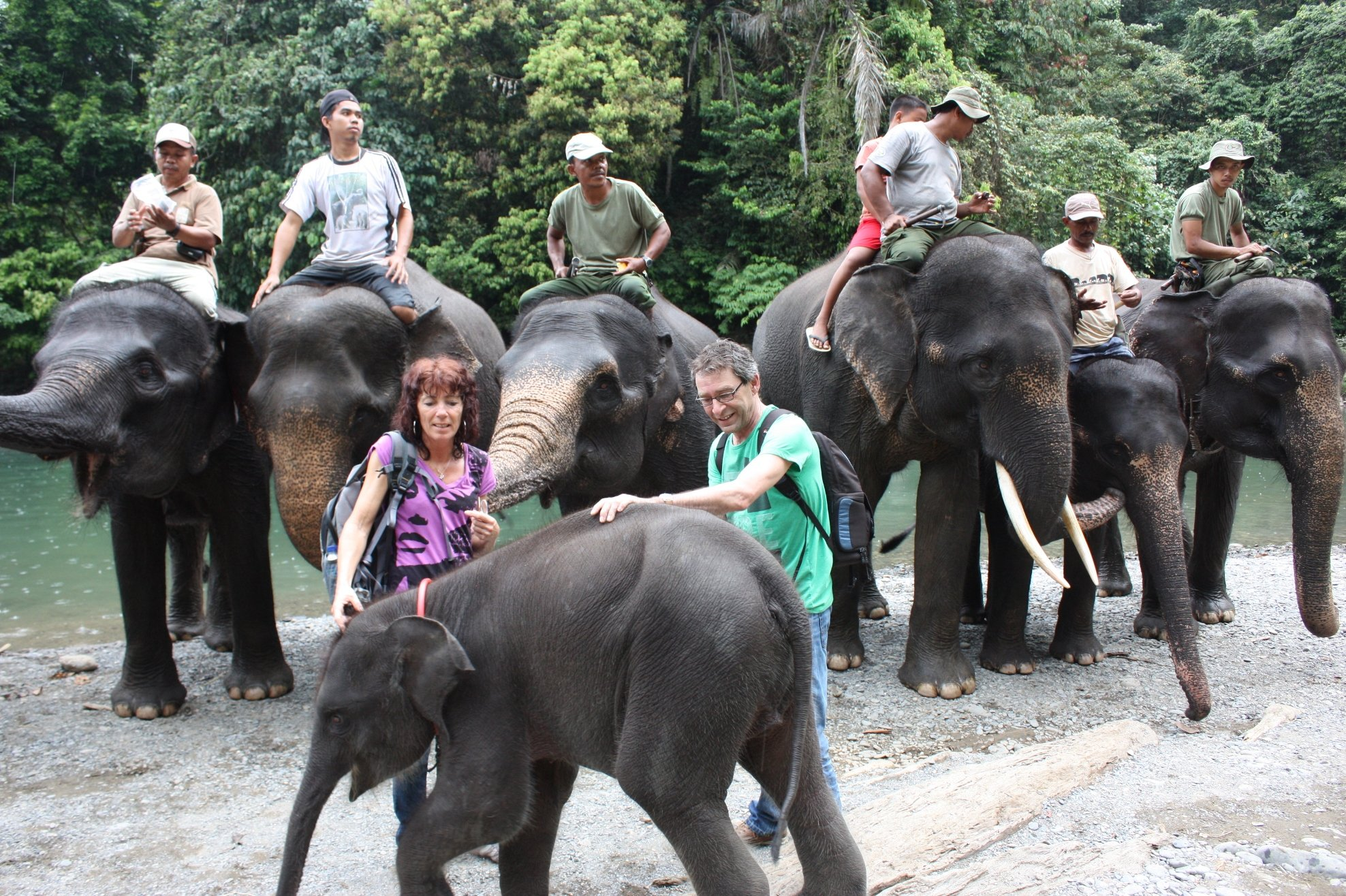 Tangkahan - olifanten wassen in de rivier