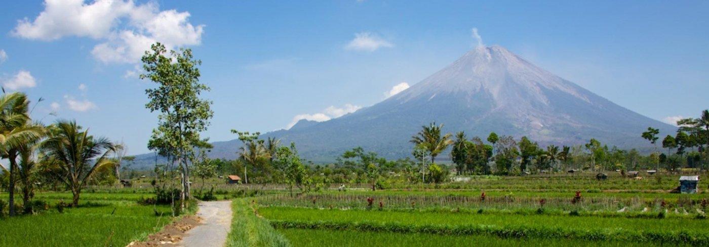 Java Merapi