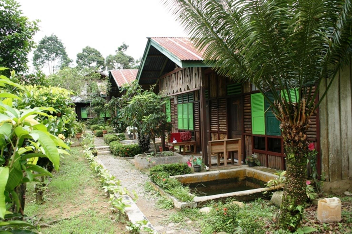 Black tiger lodge Tangkahan
